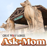 Great Wolf Lodge Ask-A-Mom Panel Member