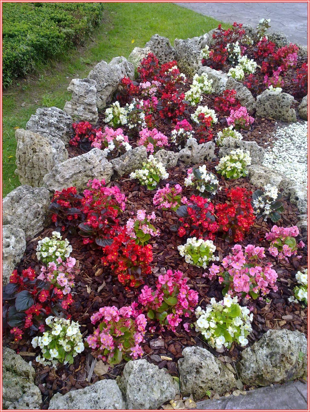 Taller de empleo cabez n de la sal rocalla conde san diego for Jardineria cantabria