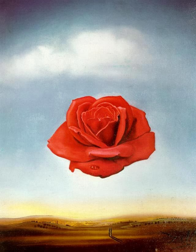 La Rosa Meditativa