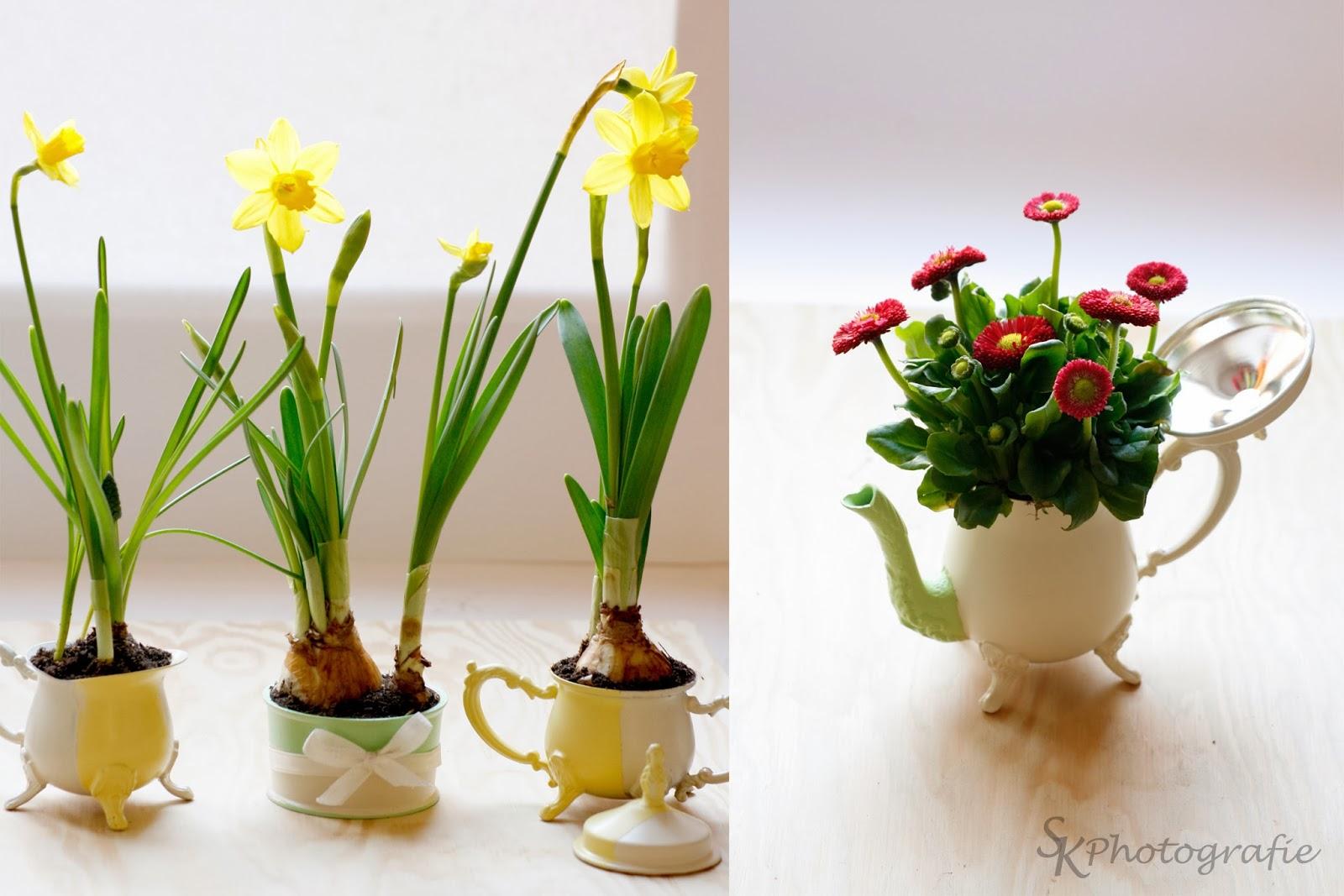 DIY: Frühling im Kännchen - Alles und Anders