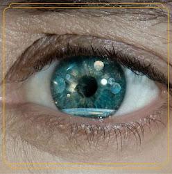 Quiero volver a ver tus ojos.