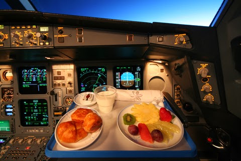 Image result for PILOT EATING MEAL PIC