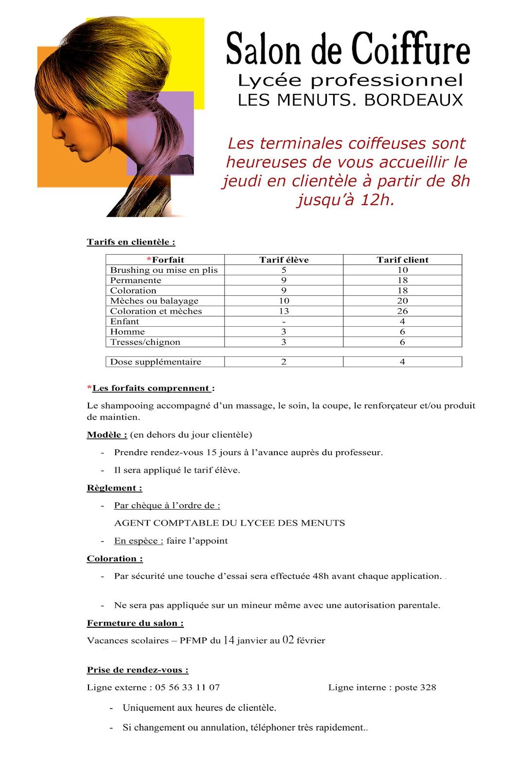 Lyc e professionnel les menuts bordeaux coiffure for Salon professionnel bordeaux