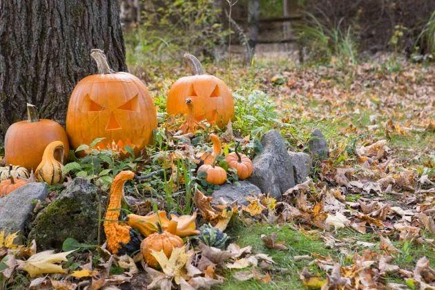 Decoraci n de - Adornos halloween caseros ...