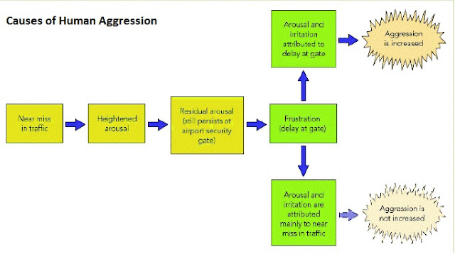 the reasons for human aggression Start studying soc psych - 12 learn  discuss the roles of culture and of social change in human aggression  summarize five reasons why media violence.