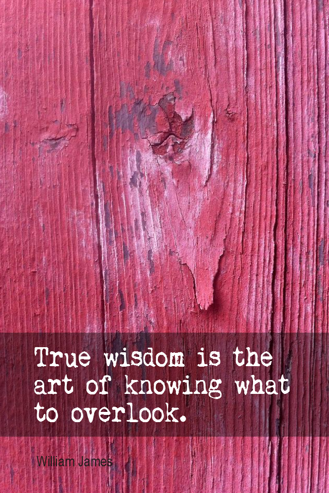 visual quote - image quotation for ACCEPTANCE - True wisdom is the art of knowing what to overlook. - William James