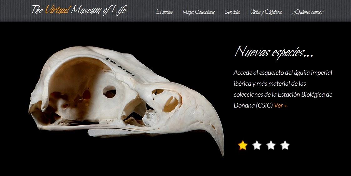 http://thevirtualmuseumoflife.com/