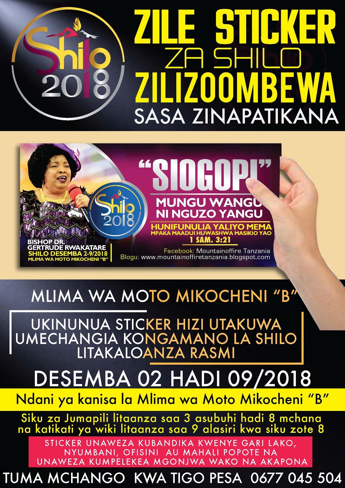 SHILO 2018 STICKER