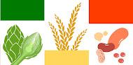 BADALI - Nueva web de Nutrición