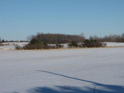 small wetland