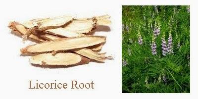 licorice root glycyrrhiza glabra