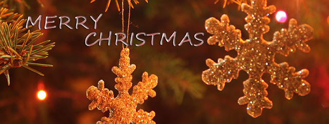 christmas flakes facebook cover card Photo