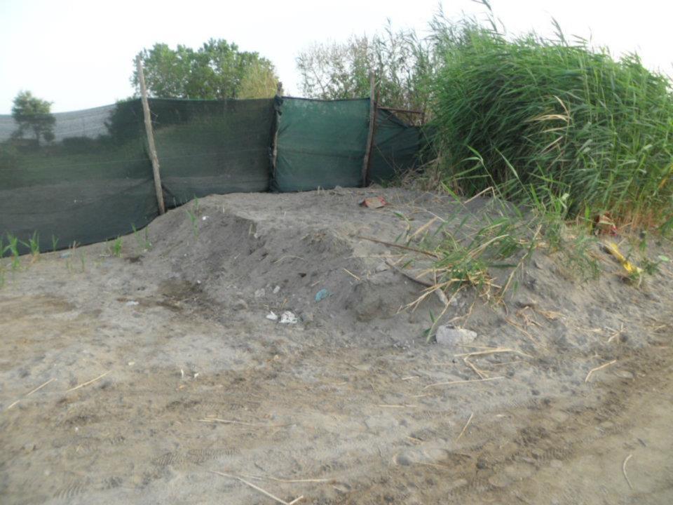 Freebacoli vincono i solleciti dei cittadini sparisce la for Setacciavano la sabbia dei fiumi