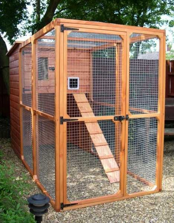 ... spruce finishes the ellis outdoor cat house and cat run is literally