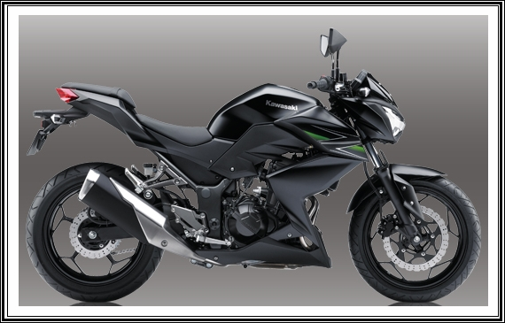 All New Kawasaki Z250 Specifications