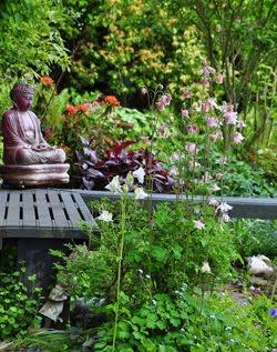 Jacquie's Spring Garden