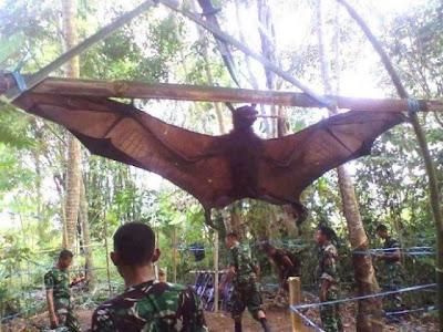 murciélago gigante capturado por el ejercito del perú