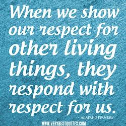 Term 1: MANAAKITANGA - RESPECT