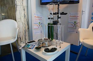 Lo stand del CNR (con spirulina) al ForumPA 2015