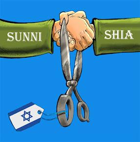 Wahdah Shia Sunni