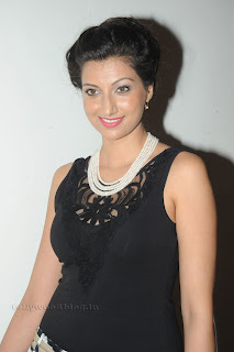 Hamsa Nandini pos at attarintiki daredi audio 030.jpg