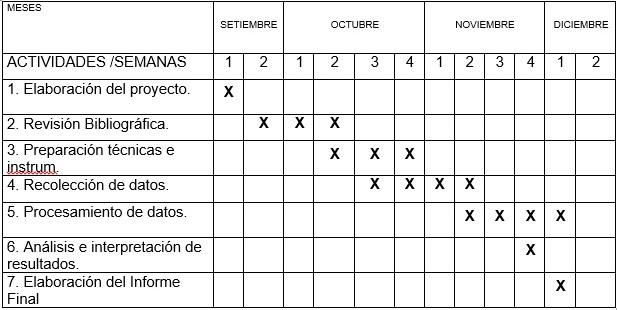 Metodolog a de la investigaci n el proyecto de investigaci n for Cronograma jardin infantil 2015
