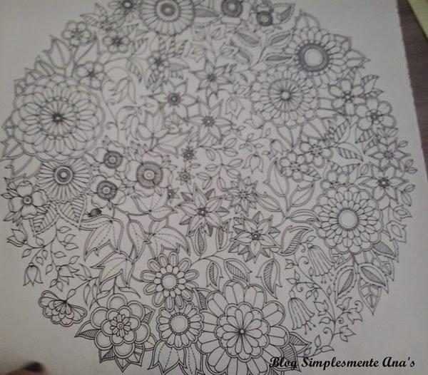 Com a quantidade de desenhos acho que ficarei 2015 inteiro pintando