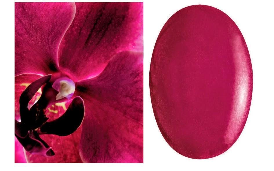 Esmaltes de uñas Colours Nature: Cerise Noir