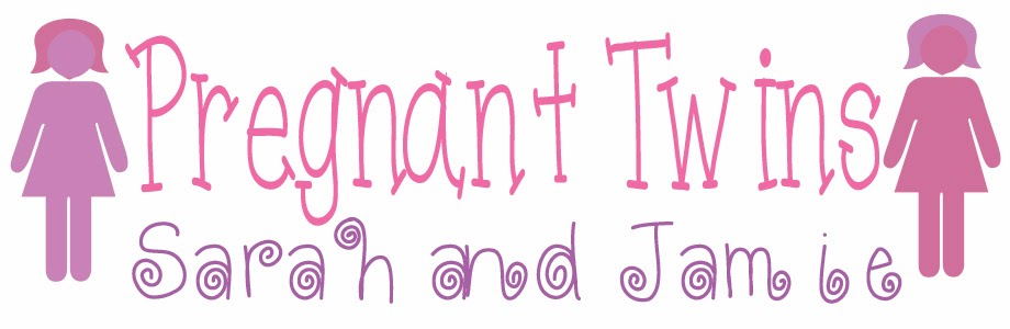 Pregnant Twins Blog