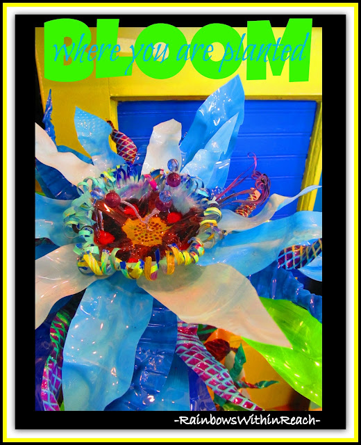 photo of: Bloom Where You are Planted, floral assemblage collage