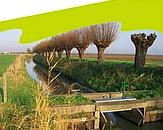 foto cover Watersysteemrapportage 2014 beheergebied waterschap Rivierenland