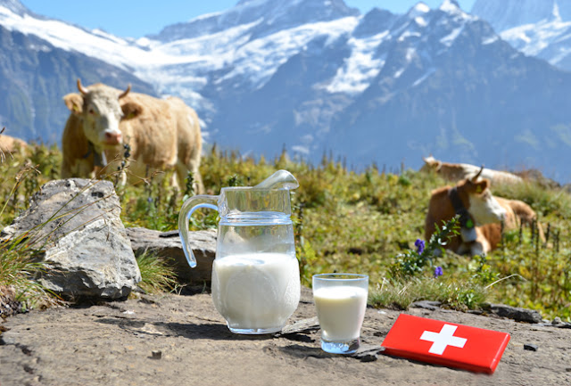 Country that Drinks the Fourth Most Milk - Switzerland