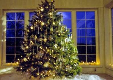 Δείτε που στολίστηκε το πρώτο Χριστουγεννιάτικο δέντρο στην Ελλάδα!