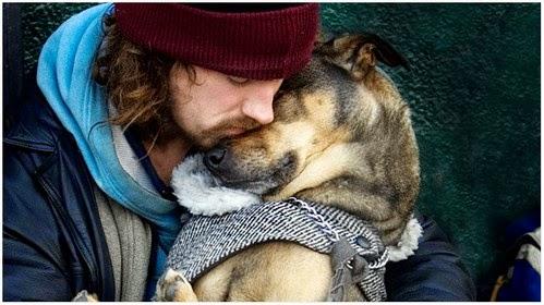 Foto Sadih Ini Menunjukkan Kesetian Anjing Pada Manusia Tanpa Kira Kaya atau Miskin
