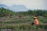 http://www.diariosdeunfotografodeviajes.com/2015/08/rutas-de-viaje-por-el-norte-de-peru.html