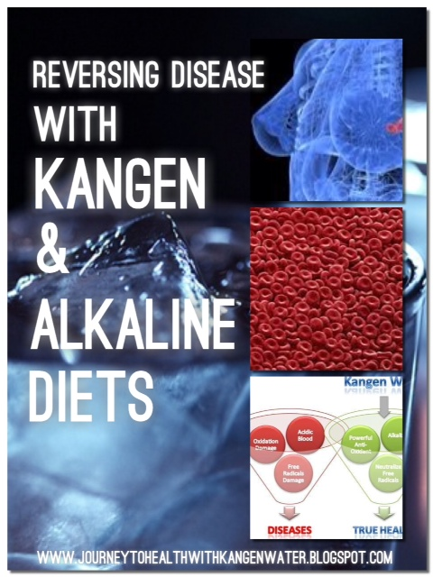 How An Ionizer Works Journey To Health With Kangen Water