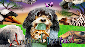 Animal Virtual