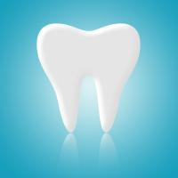 Denti bianchi come sbiancare i denti denti bianchi for A quanti mesi i cani cambiano i denti