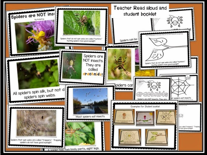 http://www.teacherspayteachers.com/Product/Spiders-Lets-Make-a-Book-Science-and-Literacy-Pack-772688