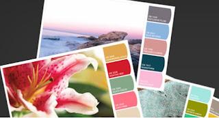 Obtén una paleta de colores de cualquier foto en Internet