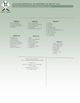 Grupos Torneo 2014