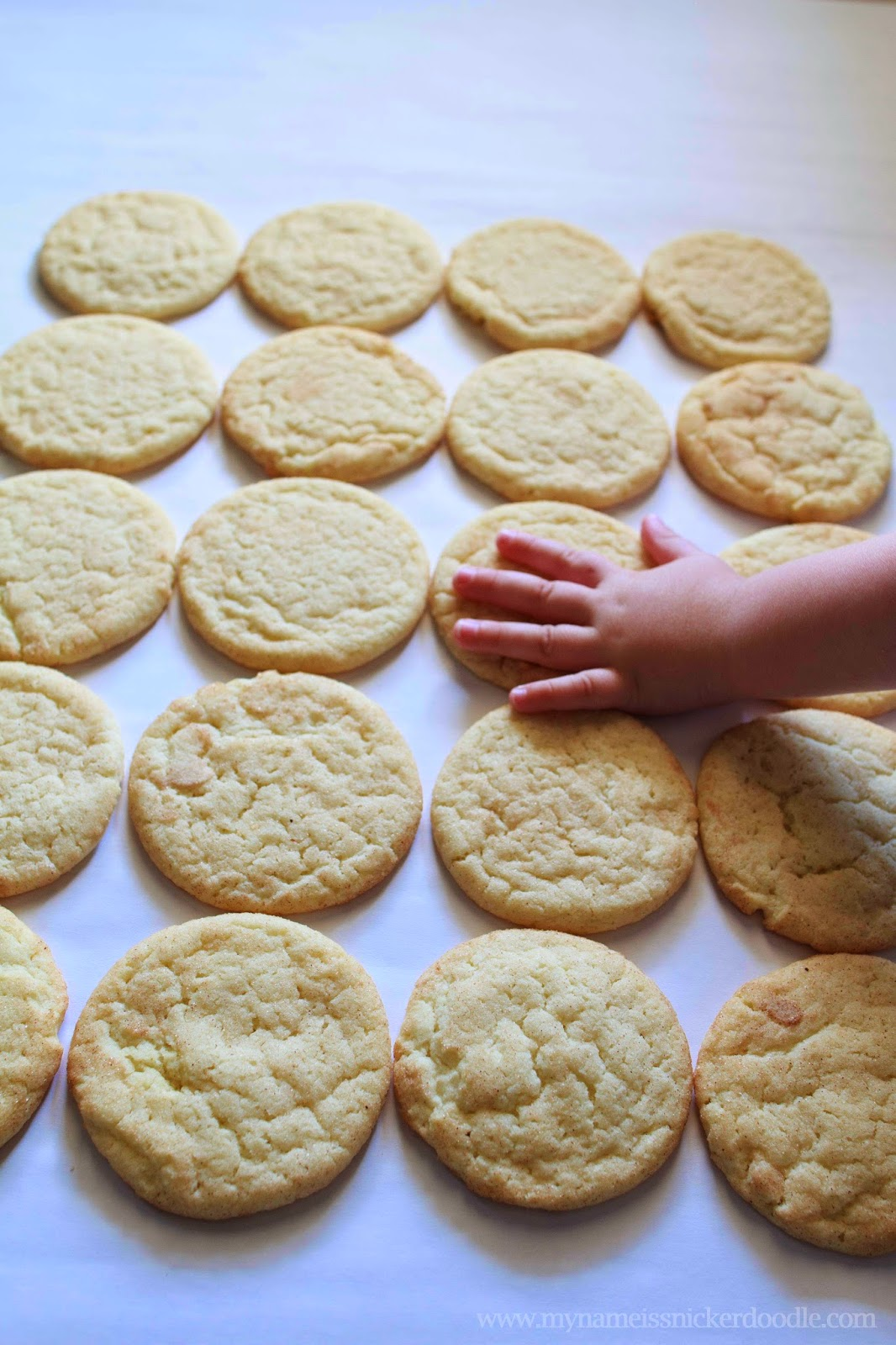 Seriously the best Snickerdoodle cookie EVER!  Completely moist, chewy and delicous!!! No one will be able to resist.   My Name Is Snickerdoodle