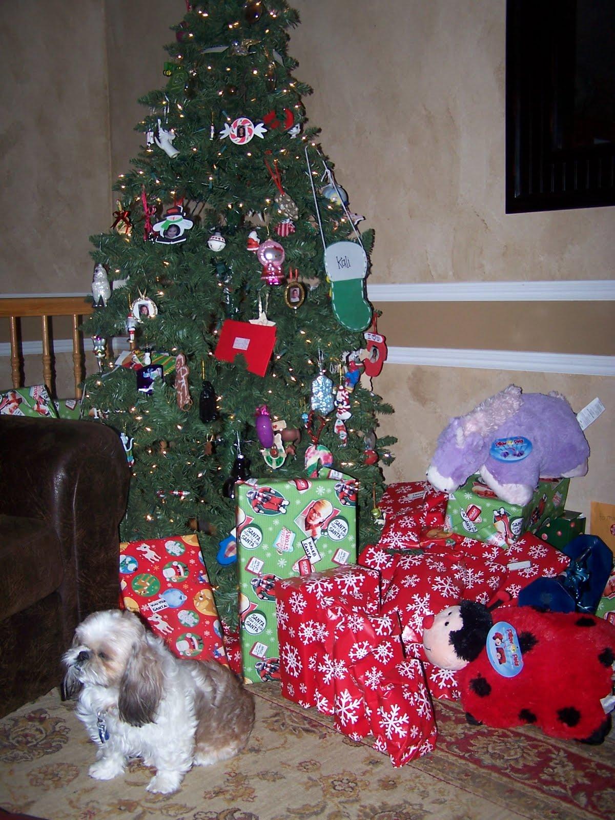 Barney Family: Christmas 2010