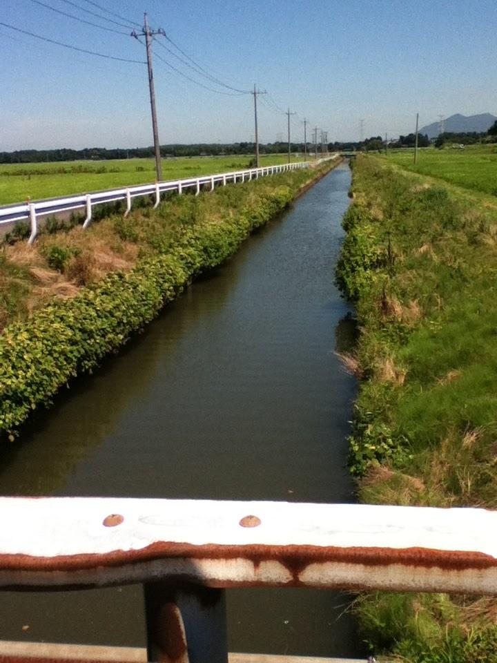 バス 釣り 鬼怒川