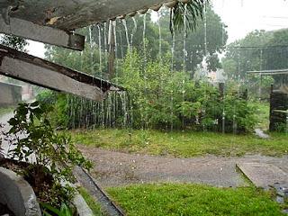 تفسير رؤيا المطر فى المنام