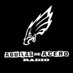 ÁGUILAS DE ACERO RADIO