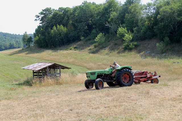 Cutting hay at the Little Farm