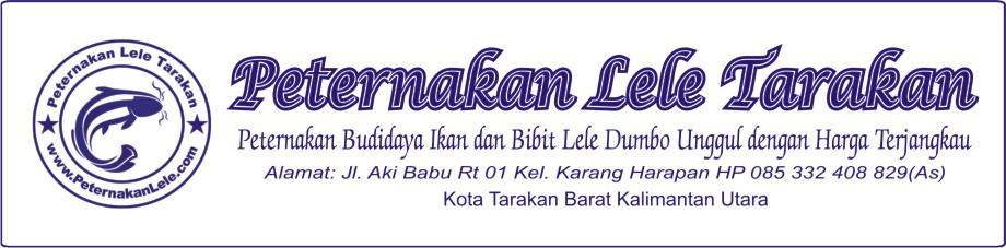 Peternakan Lele Tarakan | Peternakanlele.com