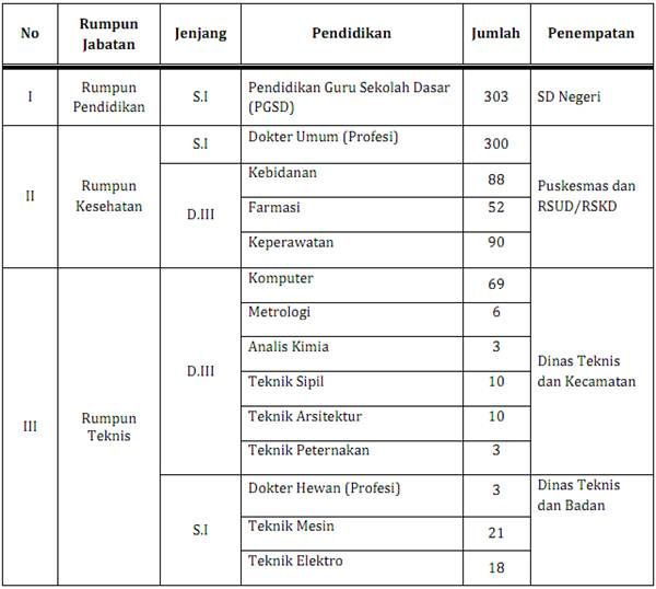 Lowongan CPNS 2013 Provinsi DKI Jakarta Rekrutmen SMK D3 S1
