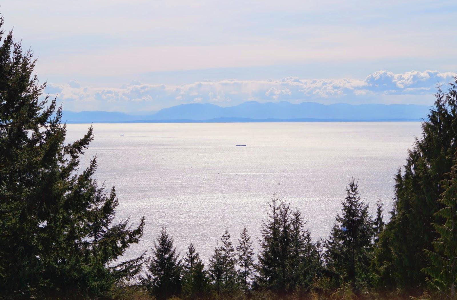 Вид на океан с горы Cypress